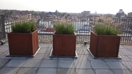 Cortenstaal plantenbak 1000x1000x1000