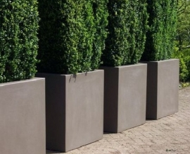Polyester plantenbak 1000 x 500 x 500 mm