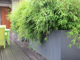 Polyester plantenbak 1200 x 500 x 600 mm