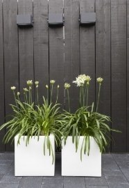 Polyester plantenbak 400 x 400 x 400 mm