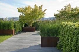 Cortenstaal plantenbak 1200x1200x800