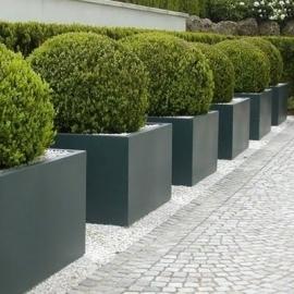Polyester plantenbak 800x800x600