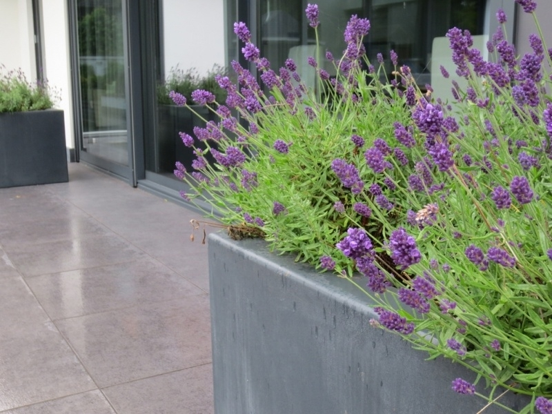 Polyester plantenbak 1000x1000x600