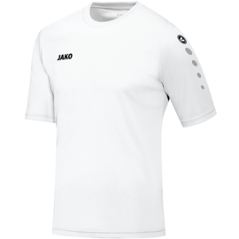 4233/09 Shirt Team KM