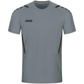4221/841 T-shirt Challenge