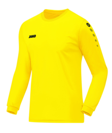 4333/03 Shirt Team LM