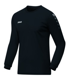 4333/08 Shirt Team LM