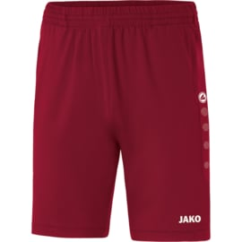 8520/01 Trainingsshort Premium