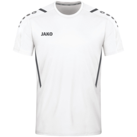 4221/002 T-shirt Challenge