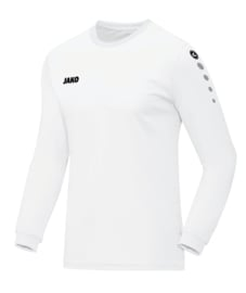4333/00 Shirt Team LM