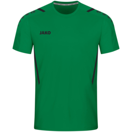 4221/201 T-shirt Challenge