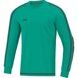 VJB 8905 24 keepershirt Striker 2.0