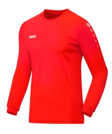 4333/18 Shirt Team LM