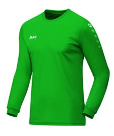 4333/06 Shirt Team LM