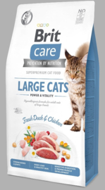 Brit care Large cats