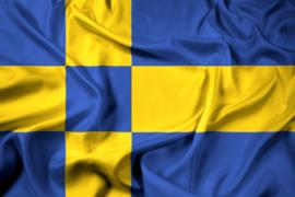 Tilburgse vlag