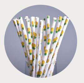 papieren rietje ananas