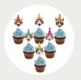 cupcake prikker poes feesthoed 1