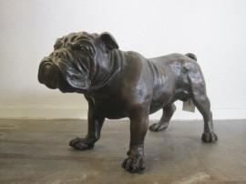 Bronzen buldog
