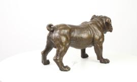 Decoratief beeld van een Bulldog.