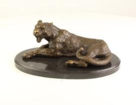 Bronzen luipaard, ook wel panter genoemd