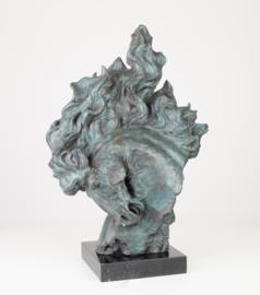 Bronzen beeld van een paardenhoofd