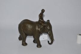 De olifant en de berijder