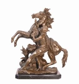 Steigerend Paard met zijn ridder