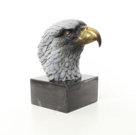 Een bronzen beeld van een adelaar