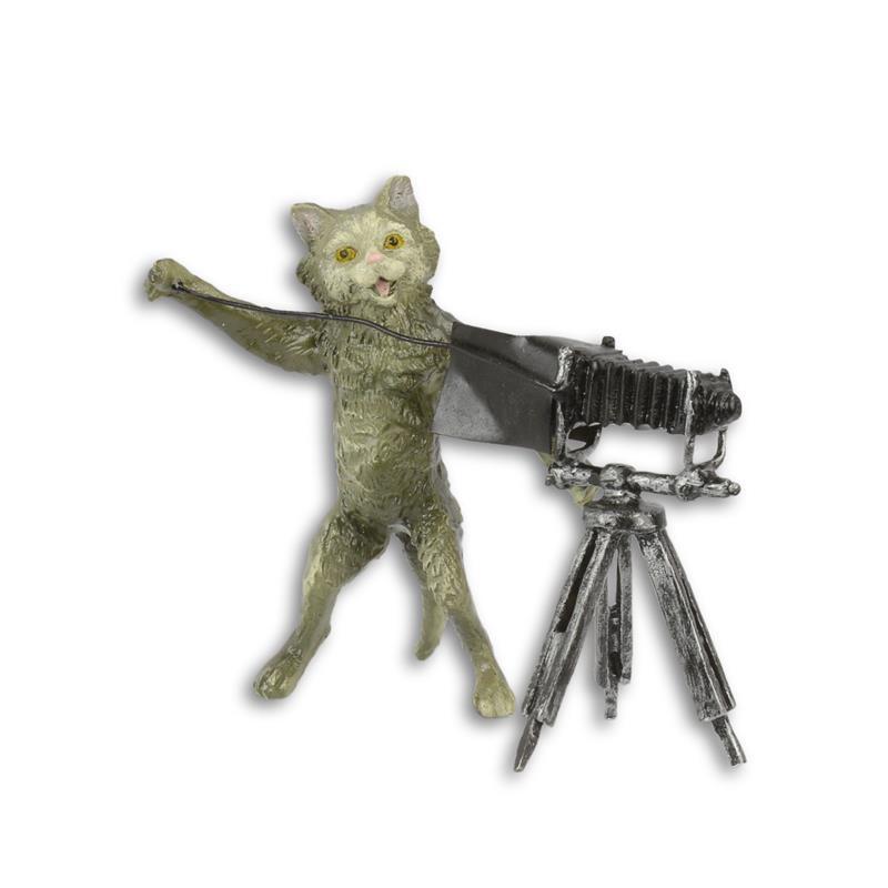 Een bronzen beeld van een kat fotograaf