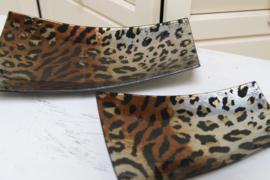 Schaal Leopard Groot