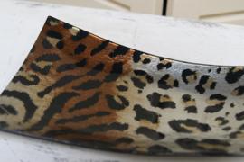 Schaal Leopard Klein