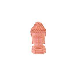 Buddha koraal