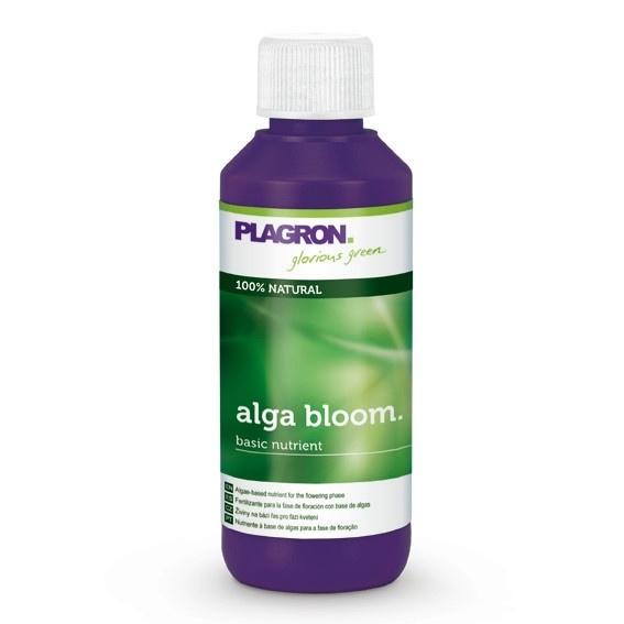Alga bloom 100ml