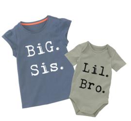 Big Sis Lil bro