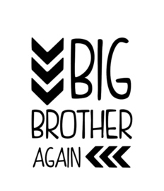 Big Brother Again!!