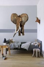 Olifant - Muursticker