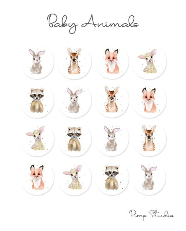 Sluitzegel - Baby Animals