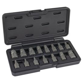 JBM Tools | Dolle schroeven/inbus verwijderset | 15-Delig