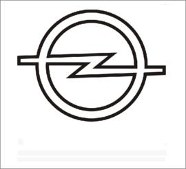 Opel katalysatoren Informatie