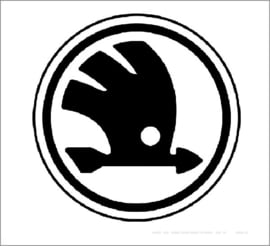 Skoda Katalysator Informatie