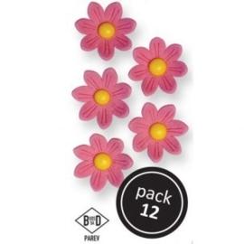 PME Pink Daisies pk/12.
