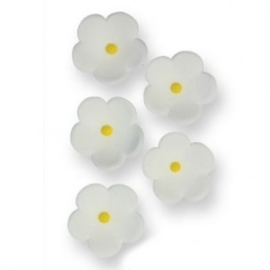 PME Medium White Blossoms pk/30.