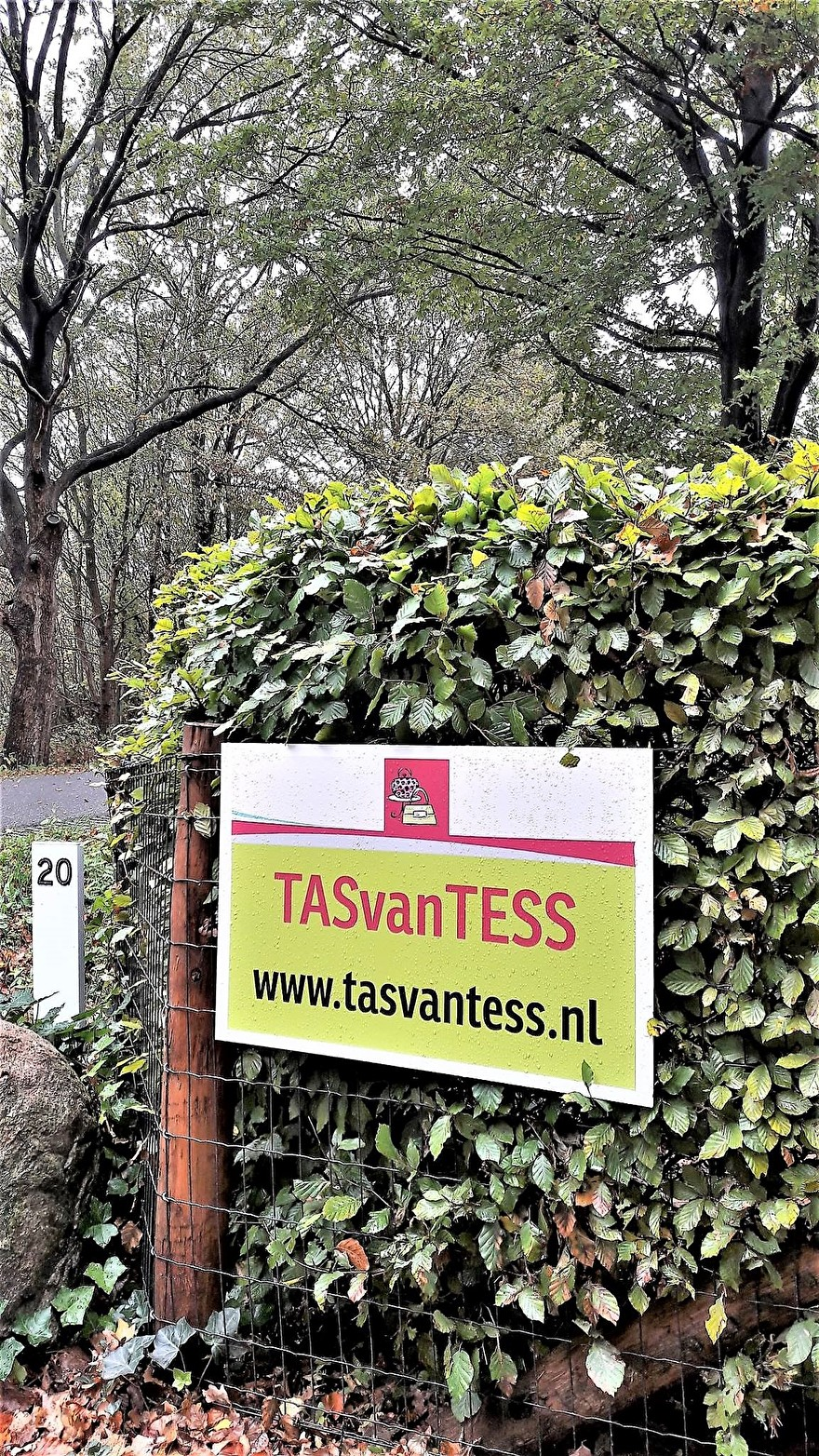 TASvanTESS!