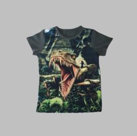 T-shirt - Dino 806