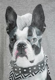 Longsleeve - Bull dog black