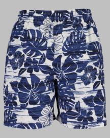 Beach Bermuda - BS 646544 blue