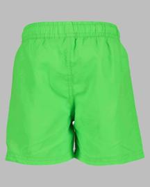 Beach Bermuda - BS 843023 Green