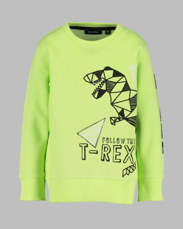 Blue Seven sweatshirt - BS 864619