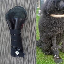 Kapotte voet? OutdoorBoot | Regenlaarsje voor de hond